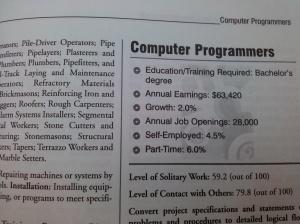 Job for a introvert - Computer Programmer